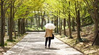 日傘のUVカットにも寿命 紫外線カット効果の持続期間は何年?