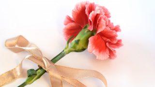 母の日のプレゼントはどうする?花と花以外でおススメをご紹介
