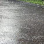 雨で濡れた革靴を乾かす!硬くなる前に新聞紙とオイルでお手入れを!