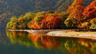 日光観光 紅葉おすすめスポットをご紹介 見ごろの時期と混雑を避ける工夫も!