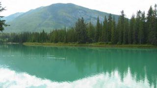 2017年はカナダ建国150年記念で国立公園の入場料が全て無料!