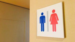 ナイアガラの滝観光で気になるトイレ事情
