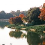 昭和記念公園で紅葉デートするならお弁当とサイクリングは欠かせない!
