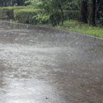台風で新幹線が止まる可能性はどれくらい?運休基準は?確率では?